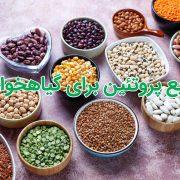 منابع پروتئینی بدون گوشت برای گیاهخواران