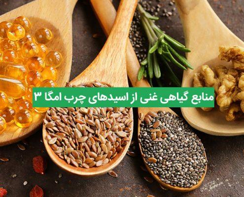 7 منبع گیاهی غنی از اسیدهای چرب امگا 3