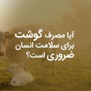 آیا مصرف گوشت برای سلامت انسان ضروری است؟